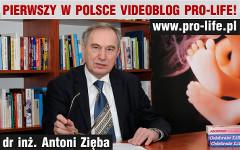 Vlog-AZ_banner